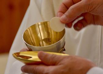 Carta de la Congregación para el Culto Divino y la Disciplina de los Sacramentos a los obispos sobre el pan y el vino para la Eucaristía