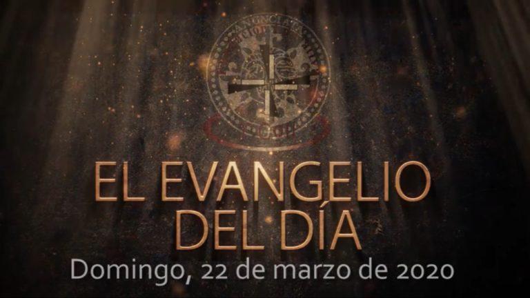 Domingo 22 de marzo, Evangelio del día y reflexión «Él fue, se lavó, y volvió con vista»
