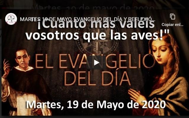 """MARTES 19 DE MAYO, EVANGELIO Y REFLEXIÓN """"CUÁNTO MAS VALÉIS VOSOTROS QUE LAS AVES»"""