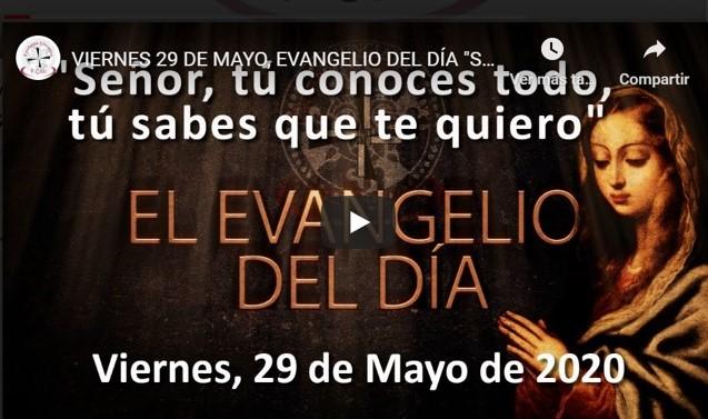 """VIERNES, 29 DE MAYO, EVANGELIO Y REFLEXIÓN """"SEÑOR, TÚ CONOCES TODO, TÚ SABES QUE TE QUIERO"""""""