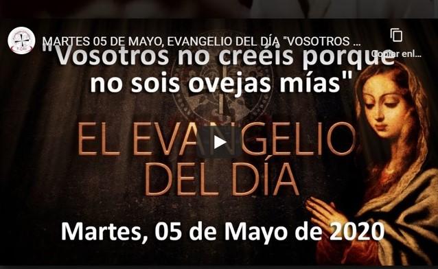 MARTES 05 DE MAYO, EVANGELIO «VOSOTROS NO CREÉIS PORQUE NO SOIS OVEJAS MÍAS»