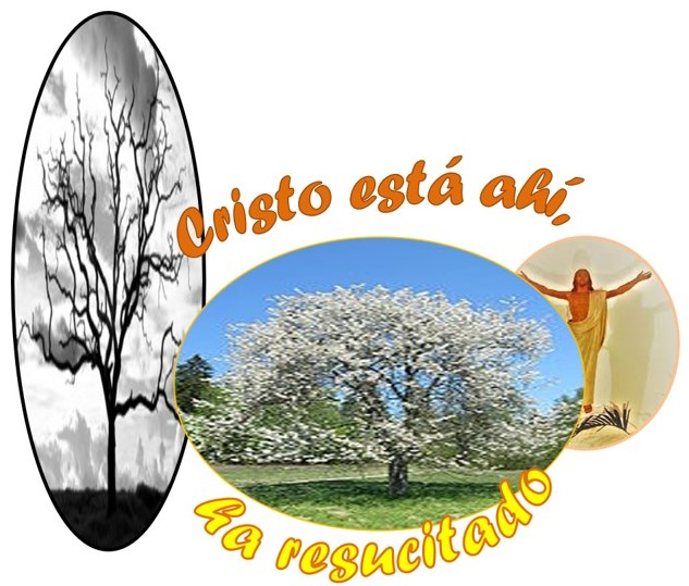 COMENTARIO DEL EVANGELIO 2 DOMINGO DE PASCUA 2021