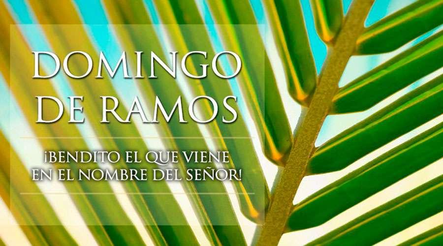 COMENTARIO AL EVANGELIO DOMINGO DE RAMOS 28 de marzo de 2021