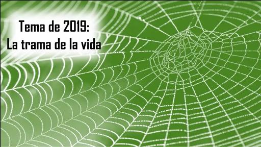 TIEMPO DE LA CREACION 2019