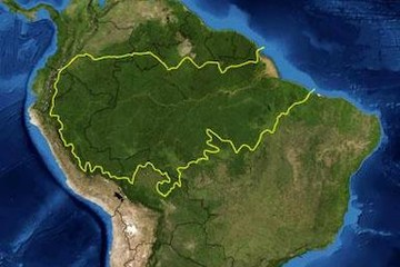 AMAZONIA COMO TEXTO, NO COMO PRETEXTO