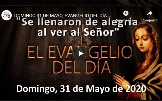 """DOMINGO, 31 DE MAYO, EVANGELIO Y REFLEXIÓN """"SE LLENARON DE ALEGRÍA AL VER AL SEÑOR"""""""